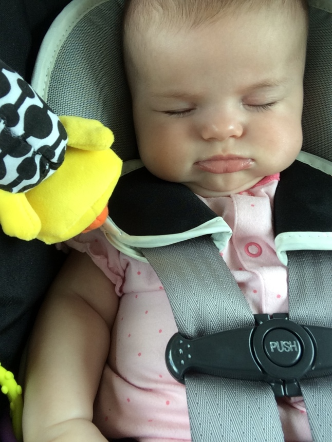 Snoozed in the car for a bit