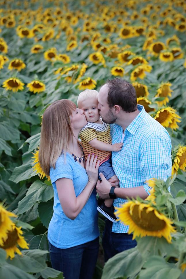 RH_Sunflowers_0003