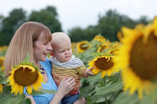 RH_Sunflowers_0013