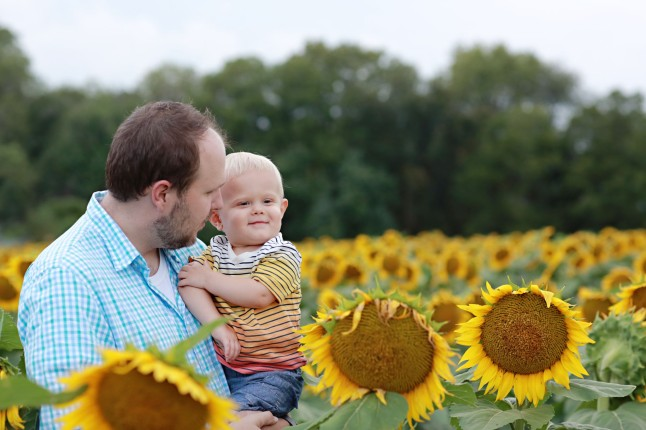 RH_Sunflowers_0014