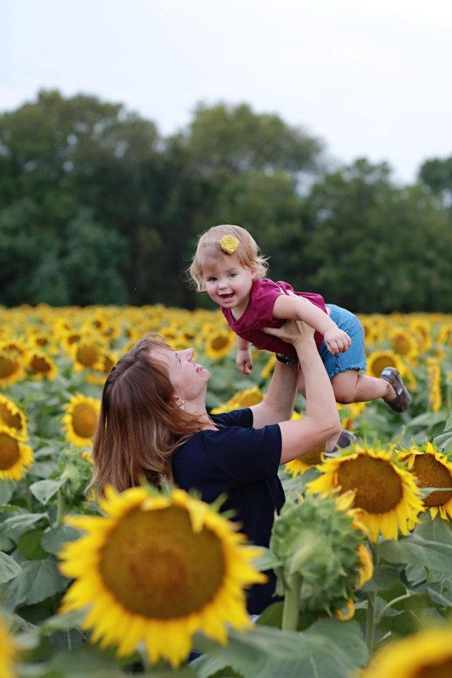 RH_Sunflowers_0015
