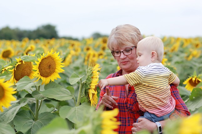 RH_Sunflowers_0022
